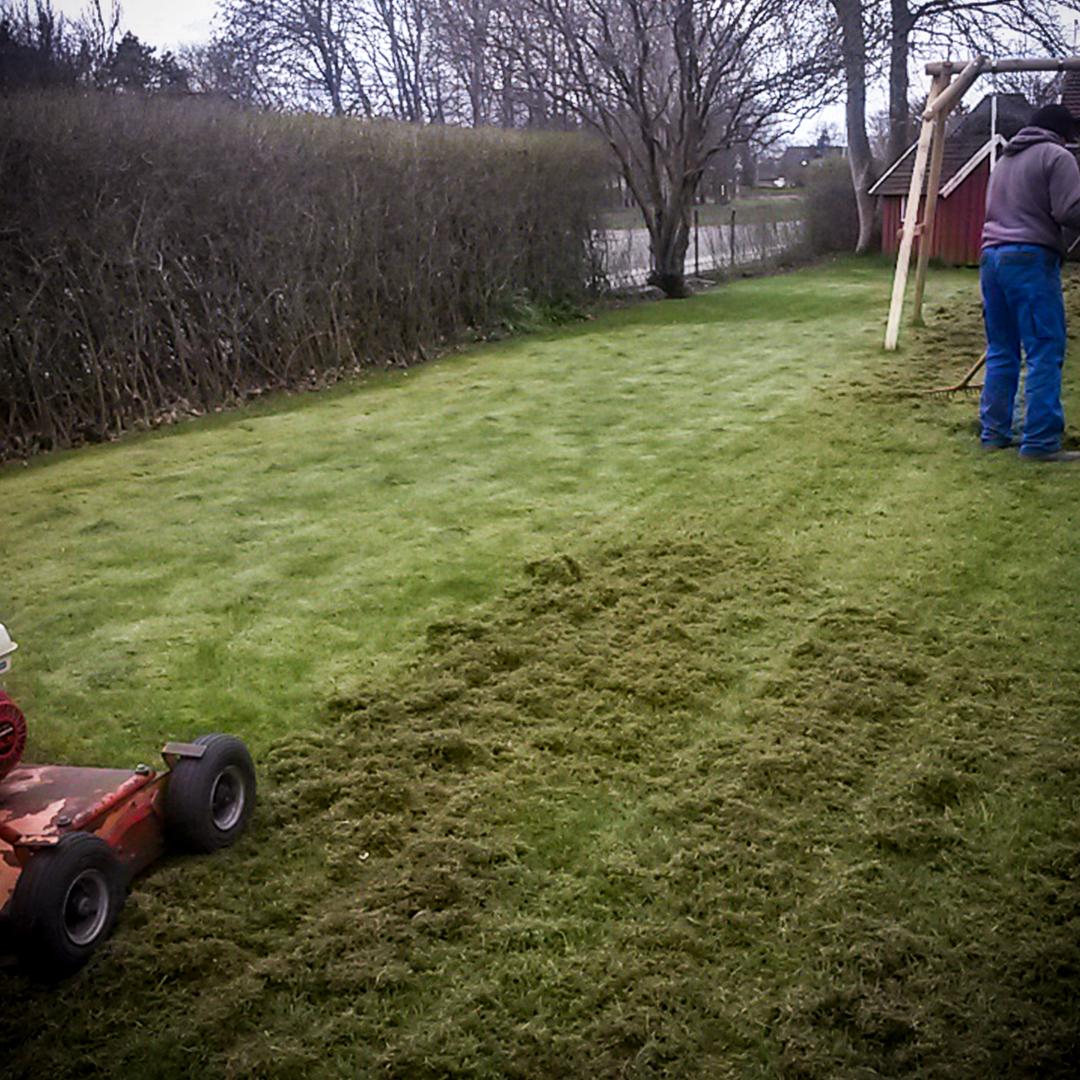 Vertikalskærring af græs