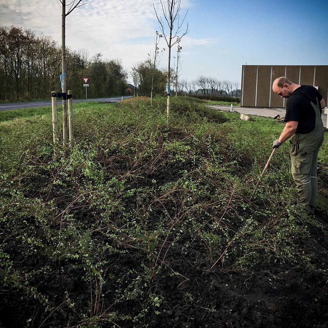 Pleje og vedligehold af grønne arealer